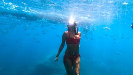 Karbones pour explorer les fonds marins