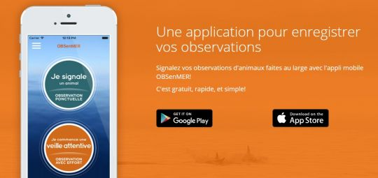 Application Obsenmer, disponible pour Android et IOS