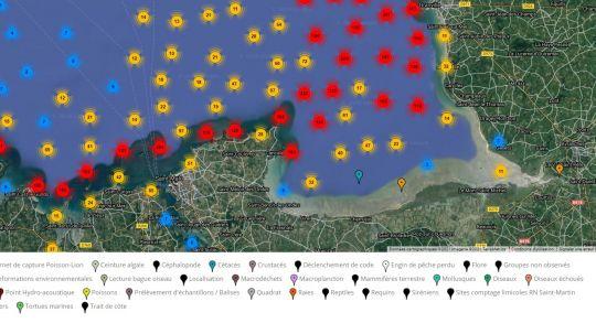 Carte mondiale des observations remontées par les utilisateurs de l'appli