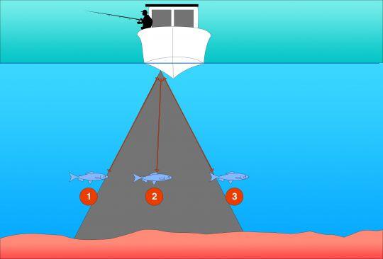 Sondeur de pêche