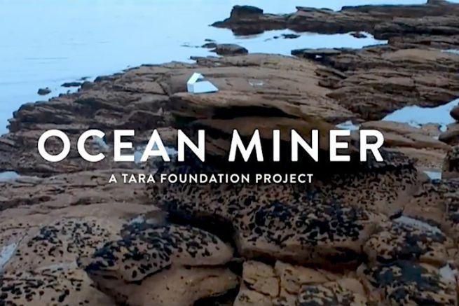 Ocean Minner