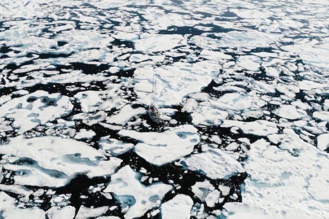 Le Why entre les glaces