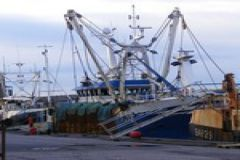 Elior s'associe avec Artysanal pour soutenir la pêche responsable