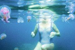 Nager avec les méduses