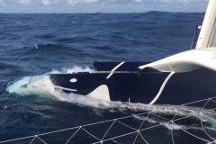 Les raisons de l'avarie de flotteur du Maxi Edmond de Rothschild