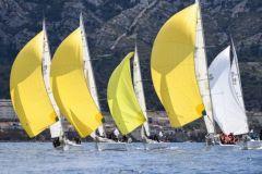 La flotte des Grand Surprise de l'écurie Team Winds et ses mythiques spi jaune