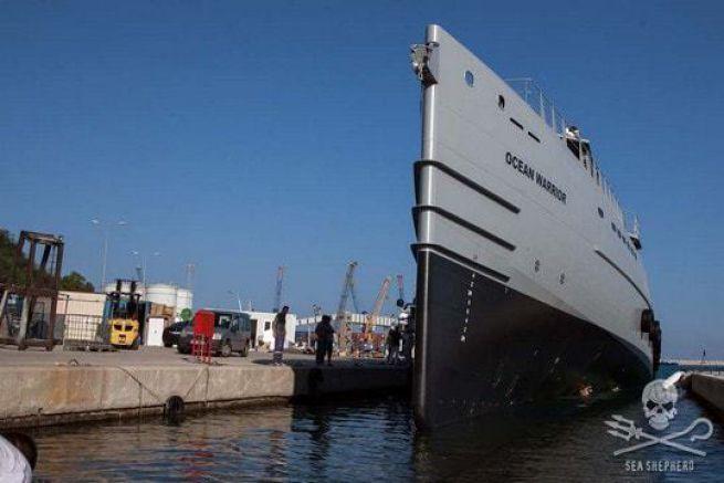 L'Ocean Warrior, nouveau patrouilleur de Sea Shepherd