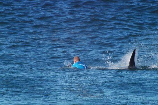 Mike Fanning attaqué par un requin